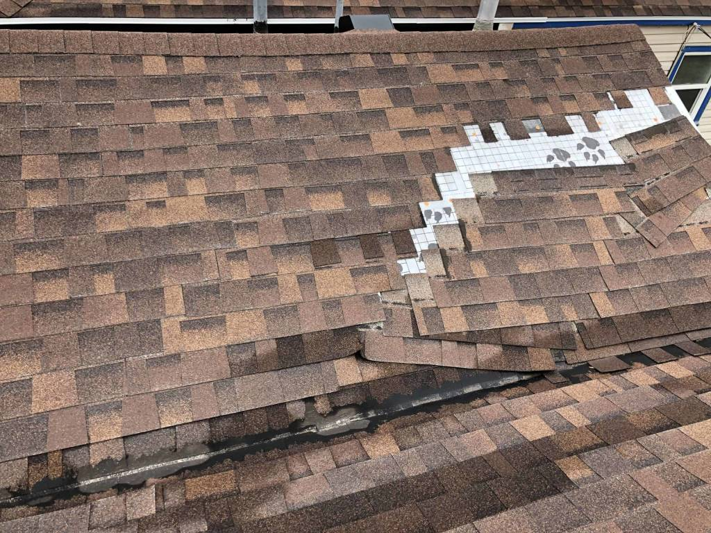 Provo W valley Roof Repair Request 2