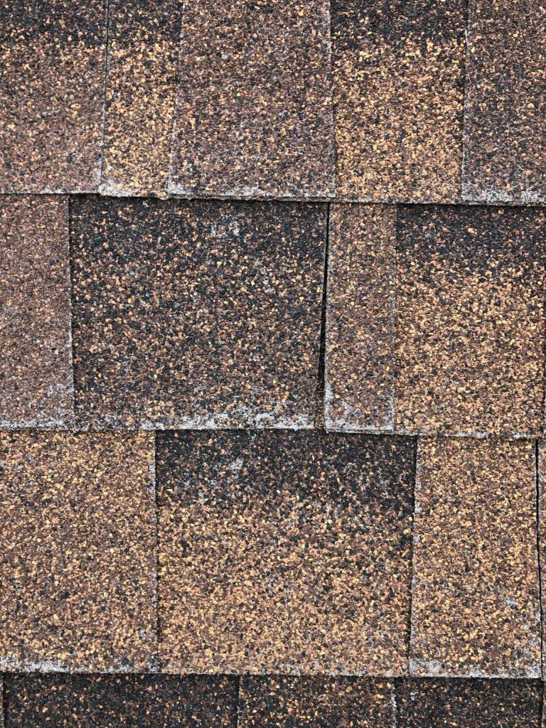 Provo W valley Roof Repair Request 3